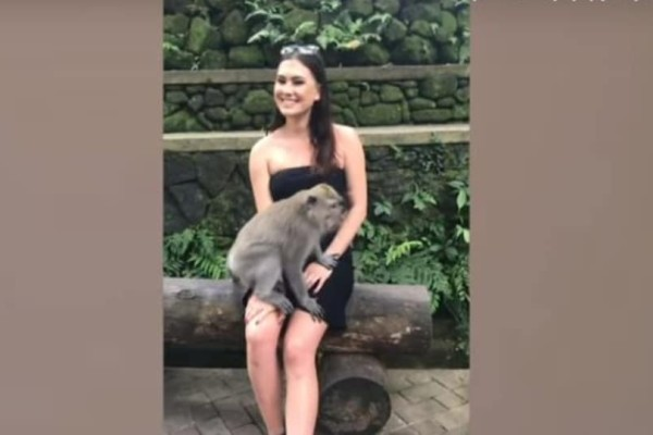 Μαϊμού κατέβασε το φόρεμα τουρίστριας στο Μπαλί και έγινε viral! (Video)