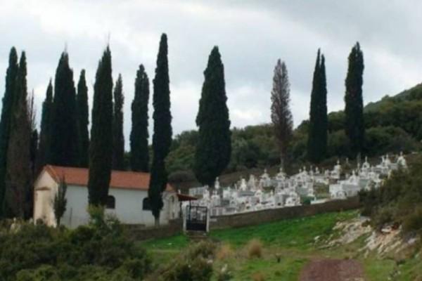 Tο γνώριζες: Για ποιο λόγο φυτεύουν κυπαρίσσια στα νεκροταφεία!