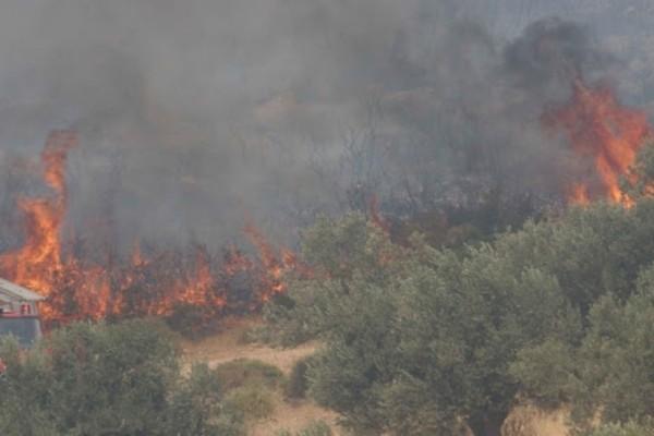 Τέθηκε υπό έλεγχο η πυρκαγιά στην Αργολίδα!