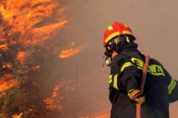 Συνελήφθη άντρας για τη φωτιά στην Έδεσσα!