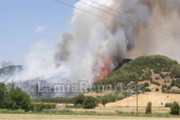 Φθιώτιδα: Μεγάλη φωτιά σε οικισμούς!