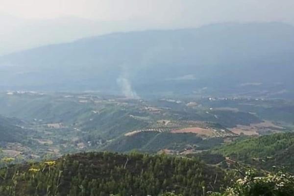 Συναγερμός στην Ηλεία! Φωτιά στην περιοχή Σέκουλα!