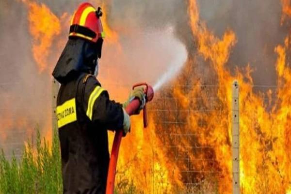Φωτιά στο Δομοκό