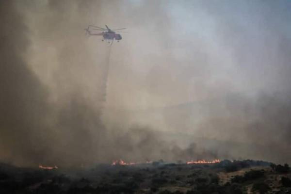 Λαμία: Ισχυρές πυρκαγιές σε δύσβατες περιοχές με τον καιρό να επιδεινώνει την κατάσταση!