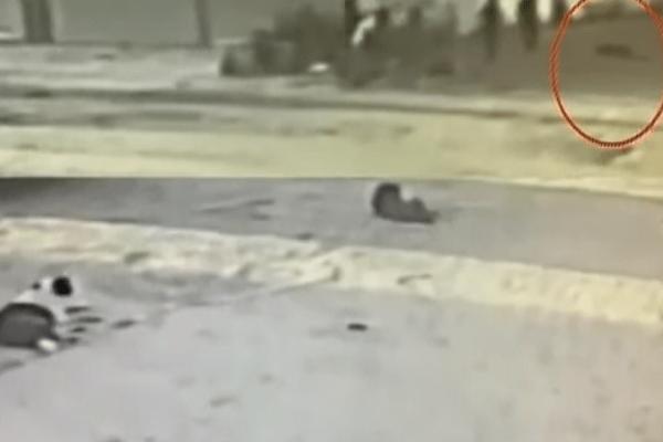 Σοκαριστικό βίντεο από τη δολοφονία 18χρονου στον Βοτανικό!