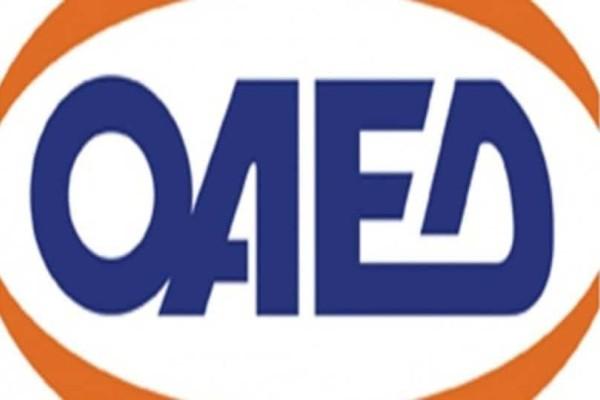 ΟΑΕΔ: 20.000 δωρεάν εισιτήρια - Ξεκίνησαν οι αιτήσεις!