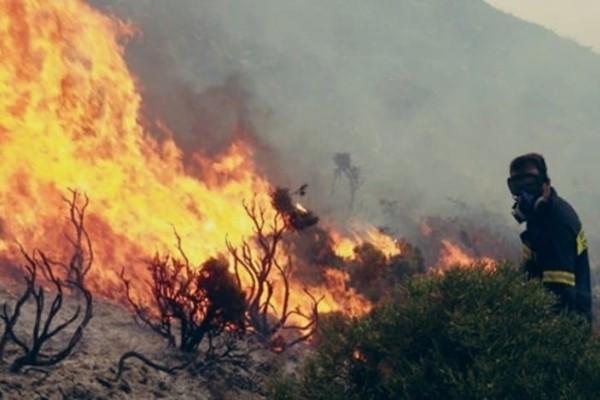 Ασπρόπυργος: Φωτιά σε εξέλιξη - Διακόπηκαν δρομολόγια του Προαστιακού!