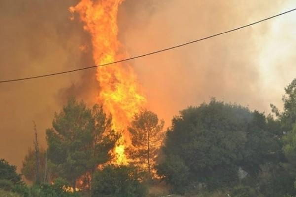 Πυρκαγιές σε Κορωπί και Ωρωπό