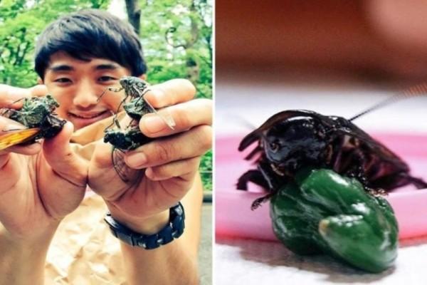 Νεαρός Ιάπωνας είχε σχέση με κατσαρίδα και όταν πέθανε την έφαγε! (Video)