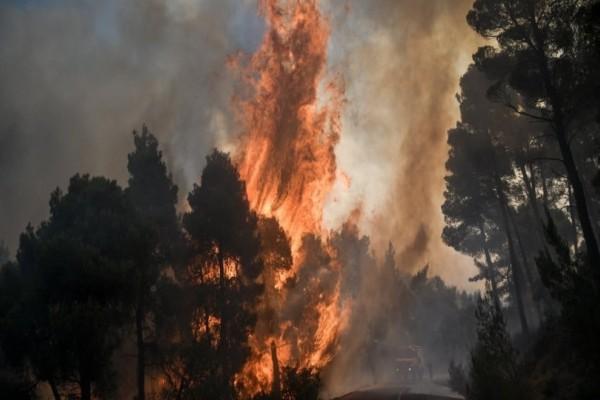 Φωτιά στην Εύβοια: Καίγεται το χωριό Μακρυμάλλη! (video)