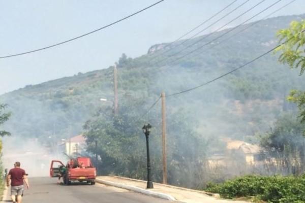 Αρχαία Νεμέα: Κοντά σε κατοικημένη περιοχή η φωτιά (photos-video)