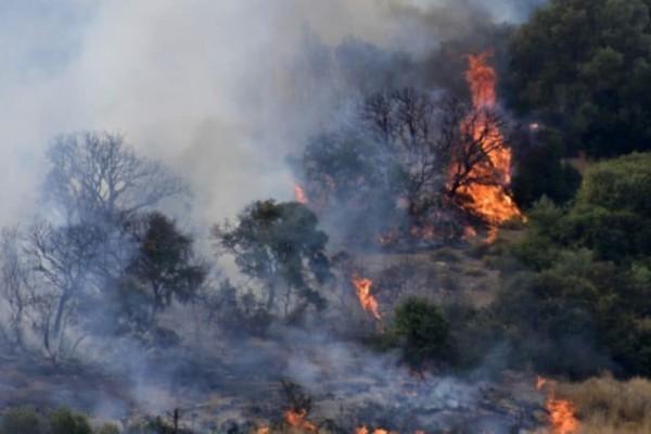 Κιλκίς: Μεγάλη φωτιά σε χαράδρα!