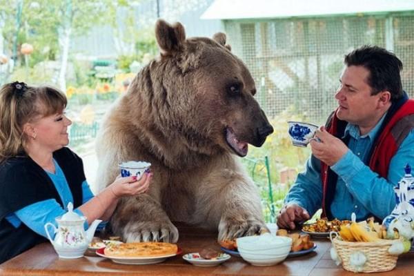 Η πιο ασυνήθιστη οικογένεια: Δείτε τον αρκούδο-σταρ Στέφαν και τους…γονείς του (Video)