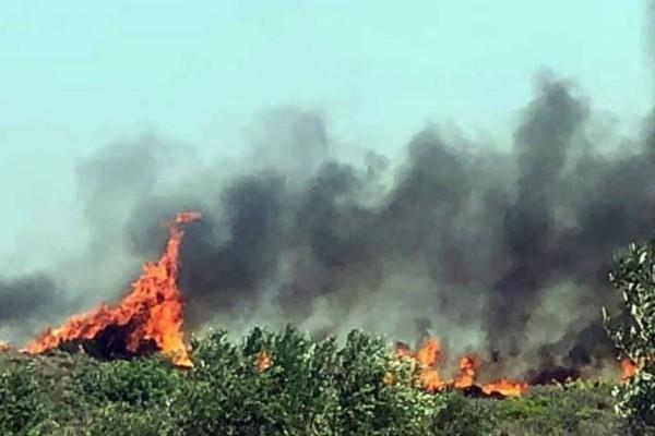 Μαίνεται η πυρκαγιά στην Ελαφόνησο!