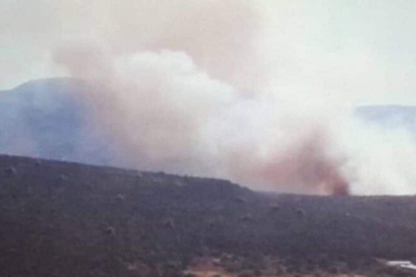 Πυρκαγιά στο Μαραθώνα: Ενισχύονται οι πυροσβεστικές δυνάμεις!