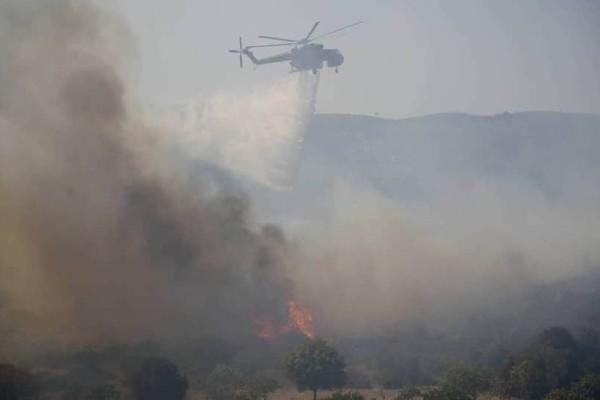 Η φωτογραφία από τη φωτιά στην Ελαφονήσο που συγκλονίζει τον πλανήτη! (Video)