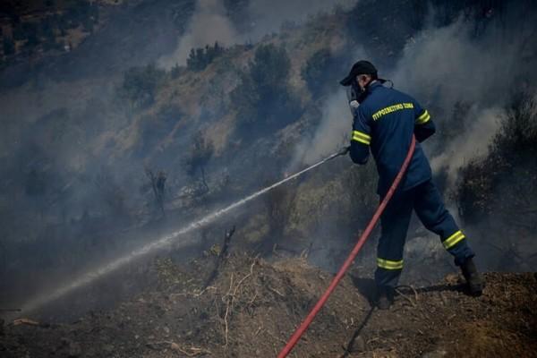 Φωτιά σε δασική περιοχή της Φθιώτιδας!