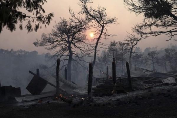 Τεράστια οικολογική καταστροφή από την φωτιά στην Εύβοια: «Στάχτη» 28.000 στρέμματα πευκοδάσους (photos-video)