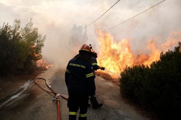 Μεγάλη φωτιά κοντά σε σπίτια στην Πεντέλη Αττικής!