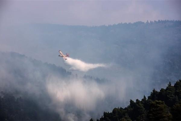 Μεγάλη πυρκαγιά στην περιοχή Αγιονόρι Κορινθίας!