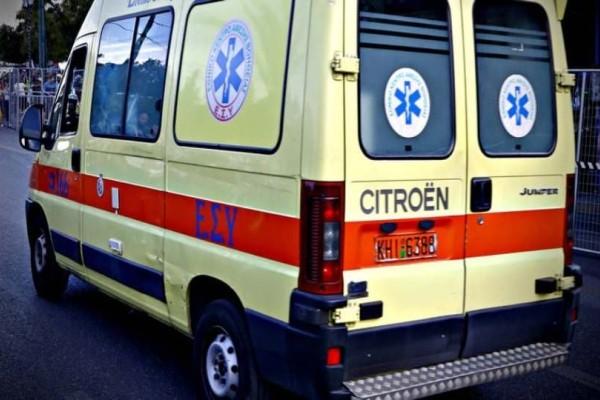 Τραγωδία στην Εύβοια: Γυναίκα καταπλακώθηκε από δέντρο!