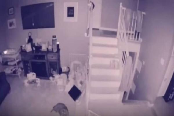 Viral: Ζευγάρι υποστηρίζει ότι κατέγραψε φάντασμα με κατοικίδιο! (Video)