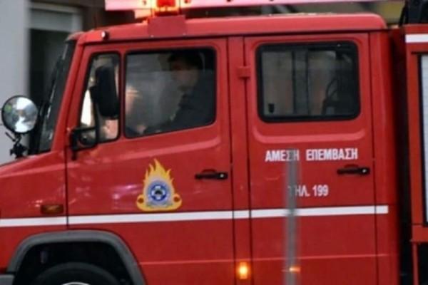 Υπό μερικό έλεγχο οι φωτιές σε Δομοκό και Λακωνία!