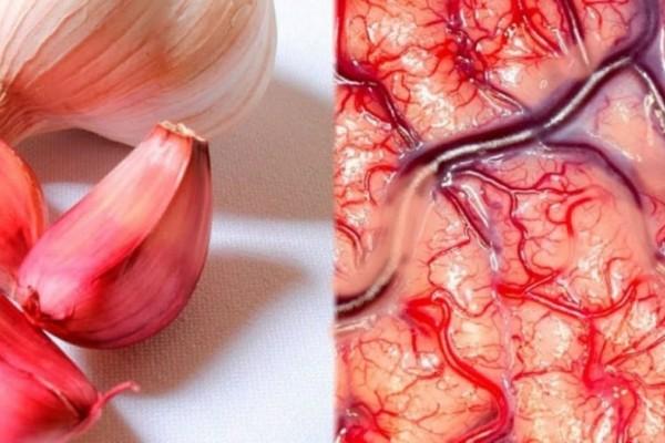 Δείτε τι θα συμβεί στο σώμα σας αν τρώτε σκόρδο με άδειο στομάχι!