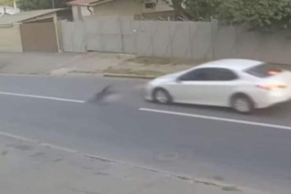 Σοκ: Αυτοκίνητο με υπερβολική ταχύτητα