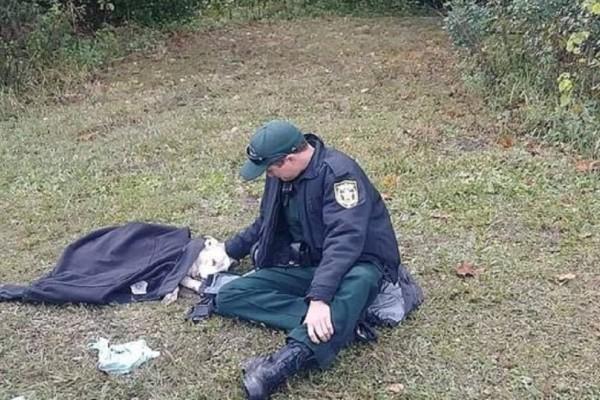 Αστυνομικός αγκαλιάζει για να ηρεμήσει σκύλο που τον χτύπησε αυτοκίνητο και τον σκεπάζει με την στολή του!