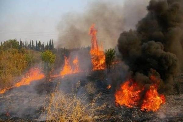 Φωτιά ξέσπασε στη Θεσπρωτία!