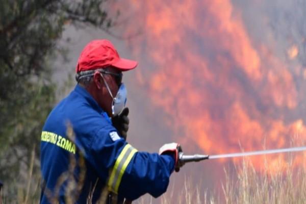 Διακόπηκε η κυκλοφορία των οχημάτων στον Δομοκό εξαιτίας της πυρκαγιάς!