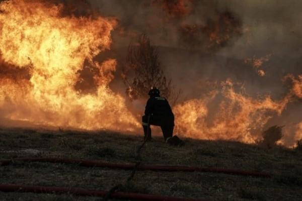 Πυρκαγιά στην Νέα Μάκρη: