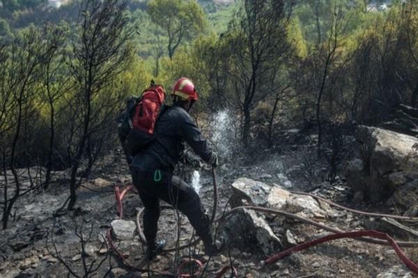Πυρκαγιά στη Νέα Μάκρη: Αναζητείται ο άντρας που έβαλε την φωτιά τα ξημερώματα της Πέμπτης!