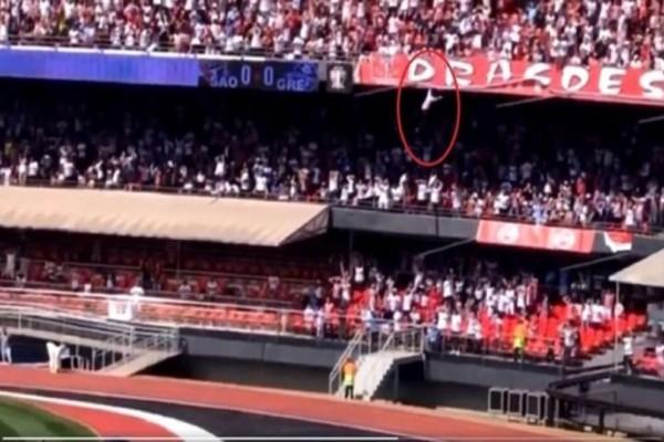 Σοκαριστικό βίντεο σε γήπεδο της Βραζιλίας: Οπαδός έπεσε από 12 μέτρα πάνω σε 13χρονη!