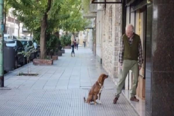 Συγκλονιστικό βίντεο: Ο σκύλος μύρισε την καρδιά του αφεντικού του σε ξένο σώμα! (Video)
