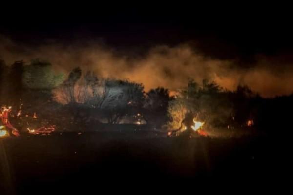 Νύχτα κόλασης στη Ζάκυνθο: Ολονύχτια μάχη με τις φλόγες, κάηκαν σπίτια! (photos-video)