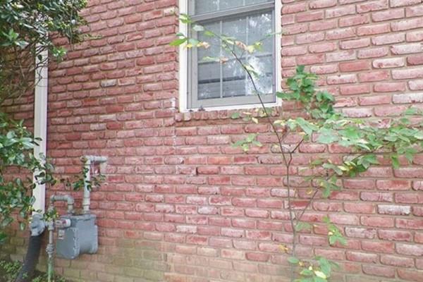 Αυτό που βρήκε ένας άντρας στον τοίχο του σπιτιού του δεν θα πιστεύετε ότι είναι αλήθεια!