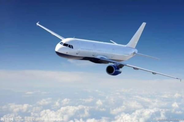 Θρίλερ στον αέρα: Επιβάτες ουρλιάζαν και προσευχόντουσαν! (Video)