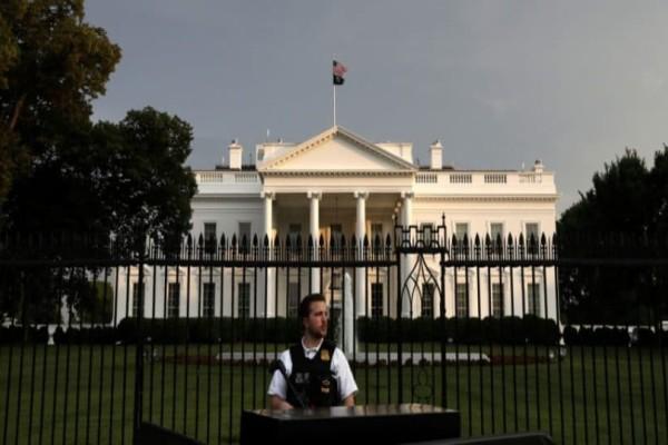 Αδιανόητο: Ποντίκι έπεσε στο κεφάλι δημοσιογράφου στον Λευκό Οίκο! (Video)