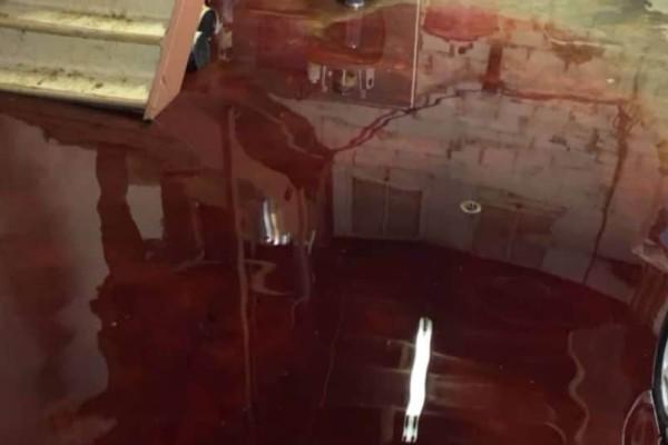 Θρίλερ: Κατέβηκαν στο υπόγειό τους και το βρήκαν πλημμυρισμένο με... αίμα! (photos)