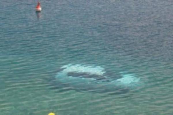 Θρίλερ στην Δραπετσώνα! Αυτοκίνητο έπεσε στο λιμάνι! (Video)