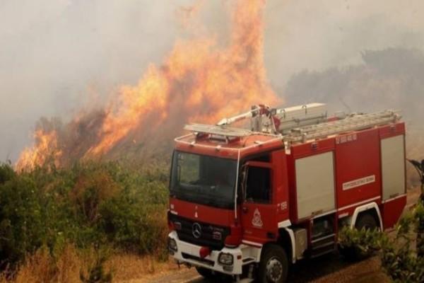 Φωτιά ξέσπασε στην Κέρκυρα! (photo)