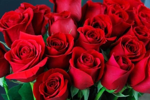 Γιατί δεν πρέπει να είναι ζυγός ο αριθμός λουλουδιών σε μια ανθοδέσμη; Δες τον λόγο και θα καταλάβεις!
