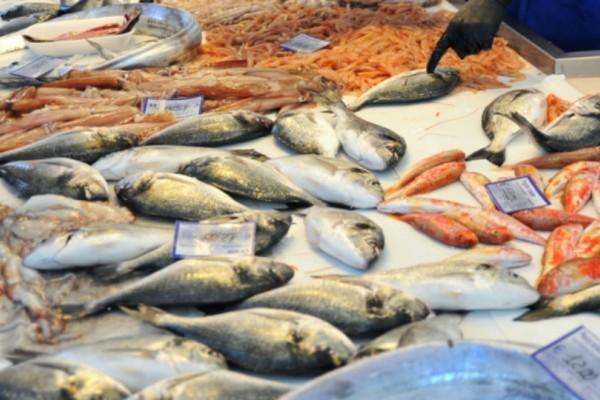 Απίστευτο: Δεσμεύθηκαν 186 κιλά ακατάλληλων ψαριών σε ιχθυόσκαλα!