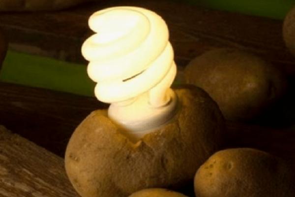 Με βραστές πατάτες μπορείτε να έχετε φως σε ένα δωμάτιο για έναν μήνα! Δείτε πώς! (video)