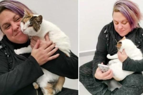 Η τυφλή γάτα που κακοποιήθηκε από παιδιά υιοθετήθηκε από τυφλή γυναίκα!