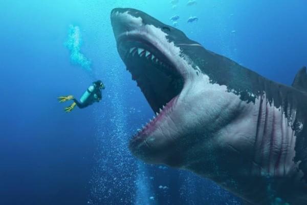 Σοκ: Καρχαρίας κατασπάραξε άνθρωπο! Ο τουρίστας αναγνωρίστηκε από την βέρα του!