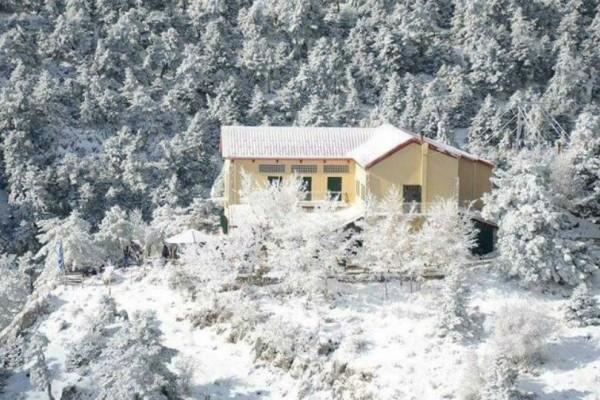 Καιρός: Έπεσαν τα πρώτα χιόνια στην Πάρνηθα!