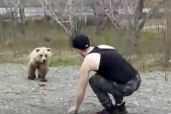 Έκανε τον μάγκα στην αρκούδα. Όμως στη συνέχεια...